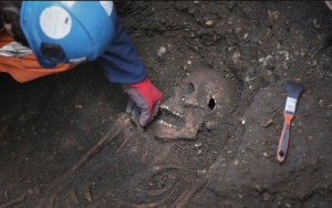 Археология и антропология